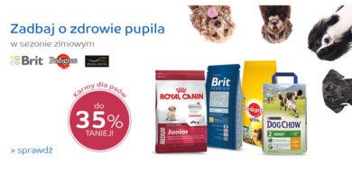 Karmy dla psów do 35% taniej na eMag.pl